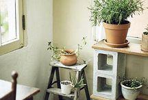 Atelie Augusto paiva ferreira / aqui plantas hortas e mini hortas para casas e apartamentos  vasos em cimento  mini hortas verticais  fabrica do paisagista e jardineiro  fabricamos a maioria de nossos produtos