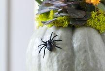 Halloween / by Raquel Fletcher Hays