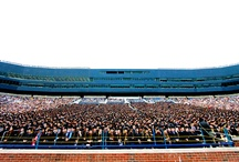 Becoming Alumni / Each year we welcome close to 8,000 new members to the alumni family. Go blue!