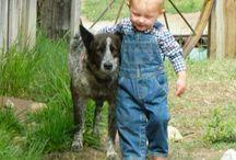 barn+djur