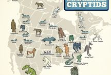 General Cryptids
