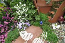 Fairy gardens / by Brenda Jowers