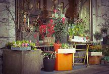 Flowers, floristry = Цветы, флористика / Цветы, букеты, цветочное оформление праздников