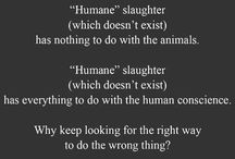 For the love of Animals <3