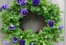 LIVING WREATH / by Mrs Baloney