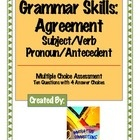 Straight Up Grammar!! / Grammar Skills: Activities, Lessons, Assessments, etc.