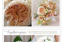 wed / Ideas for my wedding