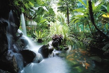 Spring Gardens / by Forbes Travel Guide