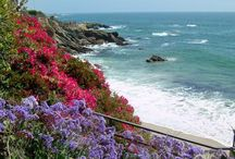 Laguna Beach / Bohemian, Southern California hippie-chic / by Forest and Culver F&C