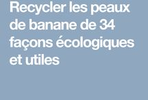Natural Lifestyle /  Eco-friendly, zerowaste, minimalism & more
