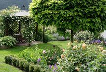 garden: design