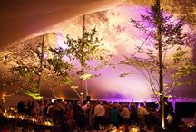 Weddings - Tents