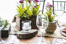 Projeto Planta Viva / Nosso projeto de decoração de casamento com flores plantadas.  www.meiodomato.com.br