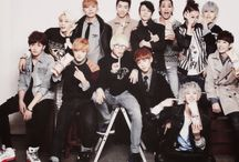 TOPP DOGG / Try to listen their song!!!!
