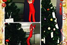 4imprint's Kevin the Elf / Meet Kevin the 4imprint elf! Today Kevin came zip-lining onto our giving tree! It looks like he is going to make one child's Christmas very happy! Stay tuned for the daily adventures with our elf on the shelf.