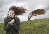 windy / by Launa Smith
