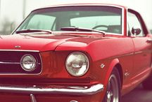 Cars / Fords & Muscle Cars or Cars in general