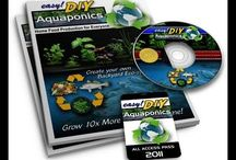 DIY Aquaponics For Beginners