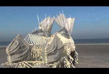 robot viento