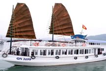 Full day boat trips / For travelers have just a little time, a day cruise is ideal to see Halong Bay. Most day cruises will offer trips to the essential attractions such as Surprise Cave, Heaven Palace Grotto, Ti Top Island, Ba Hang Fishing village and such so that passengers will not miss out on a lot of things. Day Cruise can start in the early morning, or at mid day, and usually include a meal and all attraction entrance tickets. Learn more from the list below what options you have for day cruise.