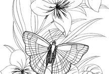 Virág pillangóval