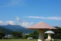Mushroom Park