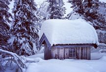 ❄️ Beautiful Winter ❄️ / ❄️ Beautiful Winter ❄️