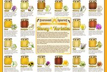 Honey Varieties /  There are more than 300 different types of honey in the United States. The flavor & color of honey depends on the floral sources' nectar which contains varying amounts of fructose, glucose, amino & organic acids.