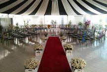 Festa Casamento Circo