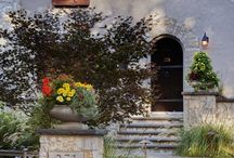 Curb Appeal / by Diane Day