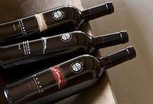 Conti di San Bonifacio Wines