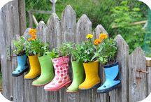 Gardening / by Suzanne Cronk