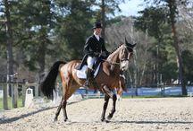 Sponsoring Aquila Paris / Sponsoring Aquila Paris : Voile, équitation, automobile...