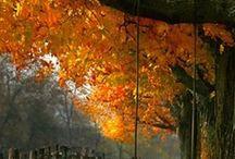 Autumn... My favorite of seasons...
