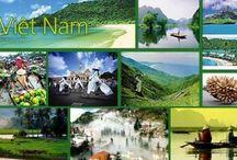 Bảo hiểm du lịch nội địa / Bảo hiểm cho người đi du lịch nội địa trong nước Việt Nam trước các rủi ro có thể xảy ra như tử vong do tai nạn hay bệnh tật, thương tật vĩnh viễn do tai nạn, ốm đau, nằm viện, phẫu thuật, ...