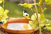 für Vögel und andere Gartenfreunde