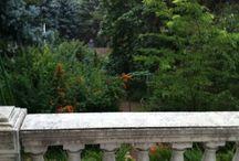 Szentendre / Garden