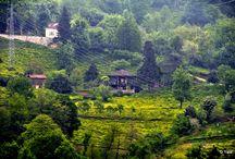 Hopa'nın Köyleri