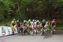 Giro d'Italia a Oropa / La salita da Biella al Santuario di Oropa, lunga 12,8 km per 728 m di dislivello, presenta pendenze massime del 13%. #bike #bici #pantani #cycling #ciclismo