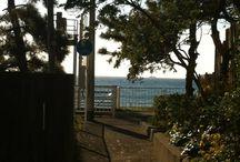 大磯ガイド / 神奈川県大磯町の情報をピンします。