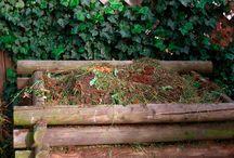 http://www.pinterest.com/christianmaier7/ / alles über Garten