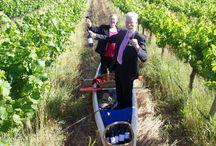 Food & Wine / Riverland food, wine and recipe inspiration