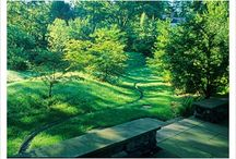 Therapeutical Gardens / Places within hospital settings that have been designed for healing, meditation and destressing..