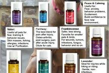 Young living-pets