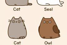 Cats... I love them! <3