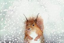 Squirrel / illustrations, photos, prints, etc.