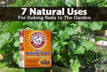 garden cures