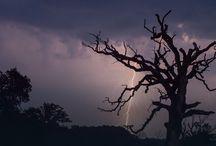 burze i pioruny