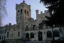 Psarskie - Pałac