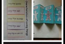Life science / Middle school life science ideas / by Ms. L